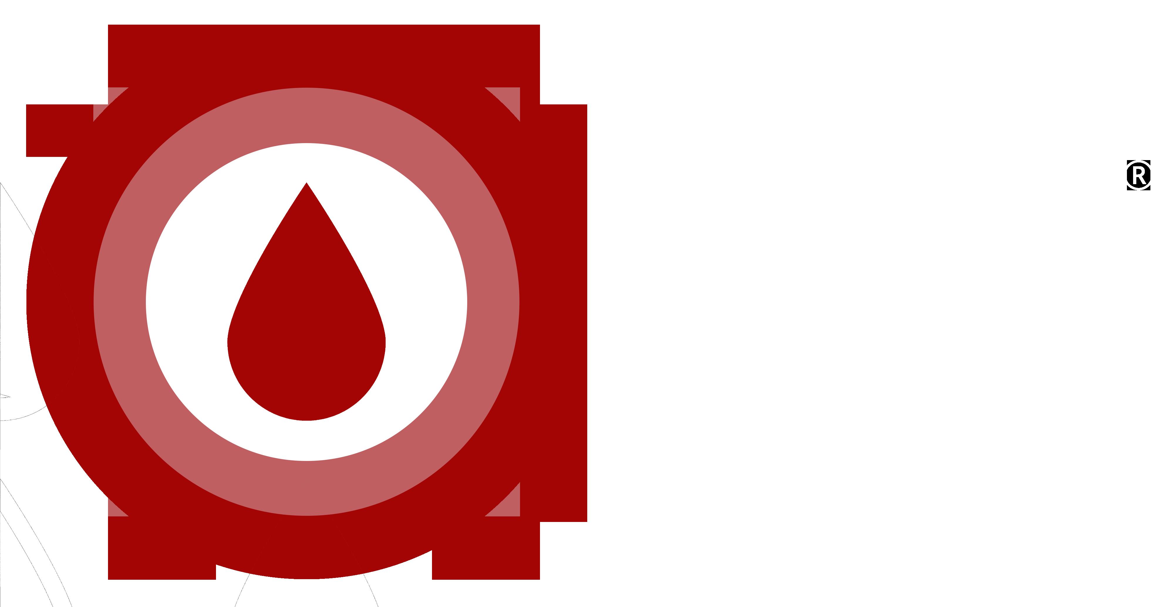 BSC®Logo Only _ Font_ko